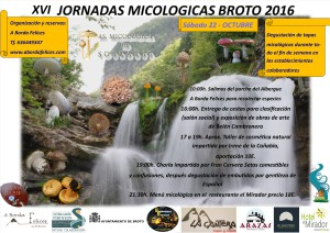 XVI-conferences-Mycological-autumn-2016